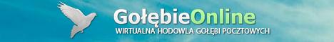 gra przegladarkowa gra online przez przegladarke via www golebie golebie online